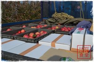 収穫済みのリンゴたち